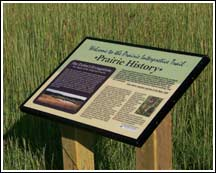history of prairie woods
